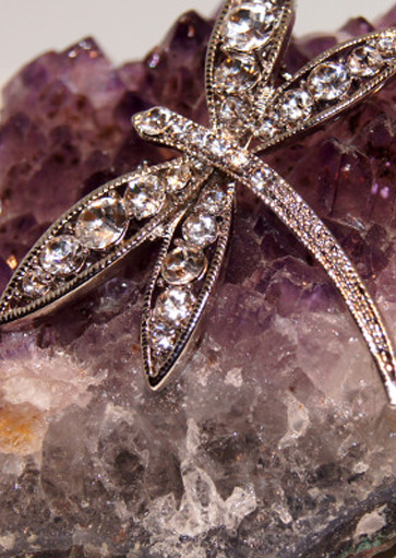 The Signature Dragonfly brooch