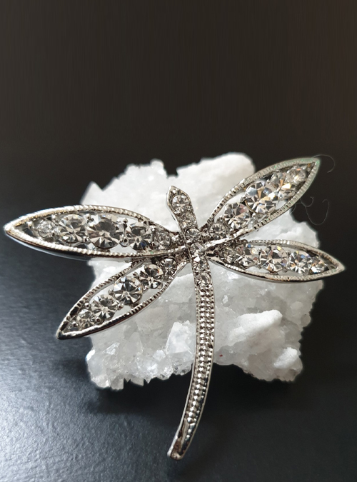 The Signature Dragonfly